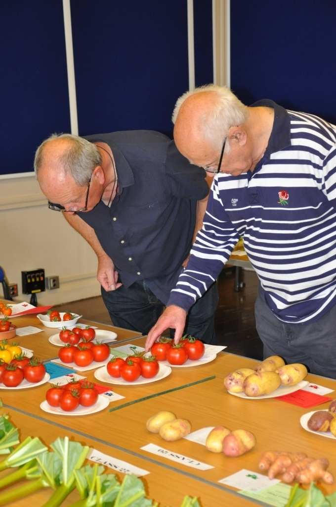 Bill and Jeff with Tomatoes